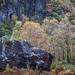 Fallen stone below King's How, Borrowdale
