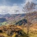 Borrowdale from King's How
