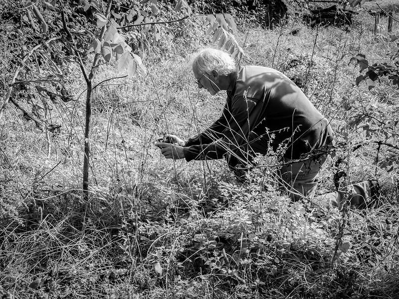 Le Naturaliste du Jardin des Plantes... 48920621181_bfbdf38e8e_c