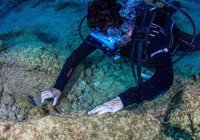 Η διευθύντρια της έρευνας Δρ Αγγελική Γ. Σίμωσι εξετάζει αρχαιότητες στον βυθό των Αντικυθήρων κατά την έρευνα Οκτωβρίου 2019