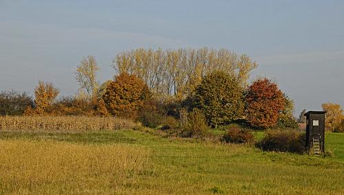 landscape landschaft landwirtschaft farming trees seasons jahreszeiten herbst autumn fall laub laubbäume deciduoustrees fields meadows bushes