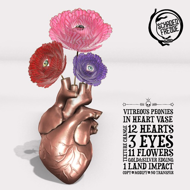 vitreous heart