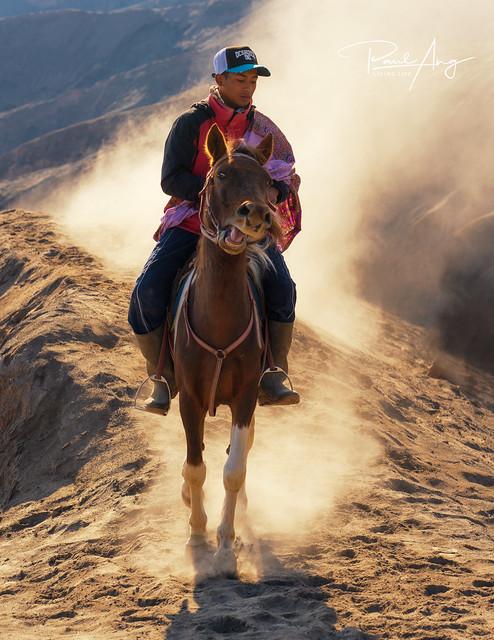 Horseman of Bromo