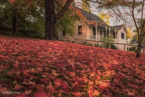 autumn canon5dmarkiii landscape nevadacity sierranevadafoothills autumncolor autumnscene lightroom6 canonef35mmf2isusm topazstudio california mainstreet nevadacounty fall