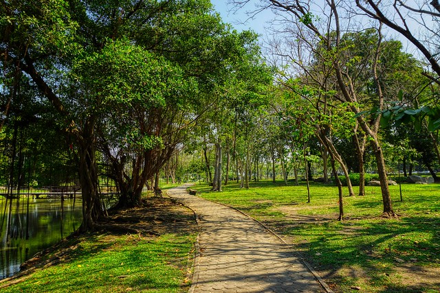 Path and trees in Suan Luang Rama IX park in Bangkok, Thailand