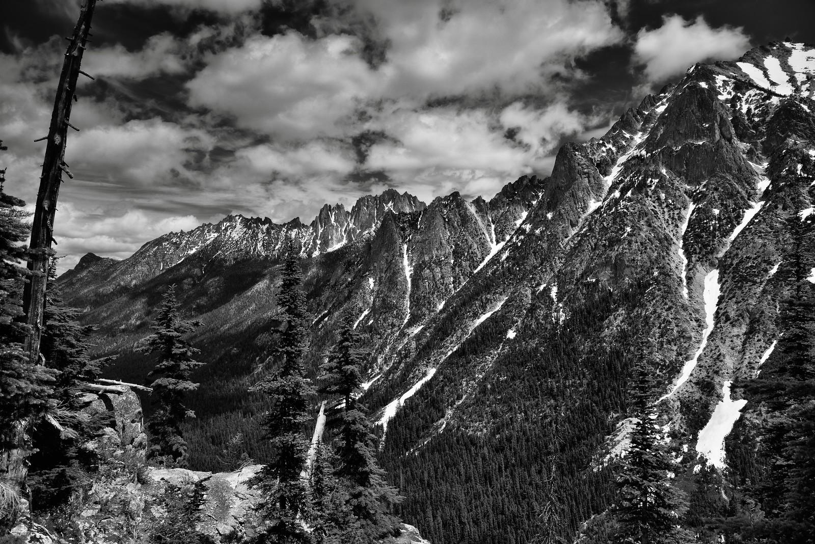 Mountain Peaks Beyond Some Nearby Trees (Black & White)
