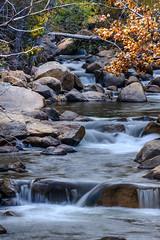 South Carson River