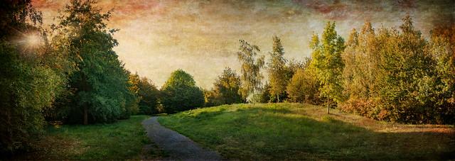 fin de journée d'automne