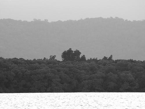 peter russell olympus e410 slr port douglas queensland australia sunset landscape bw black white