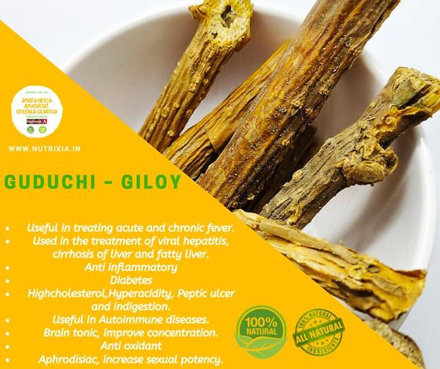 Giloy / Giloi / गिलोय पाउडर / Guduchi / Amrita / Tinospora cordifolia