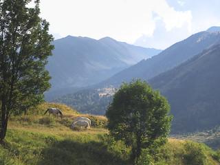 Vallée de Mantet