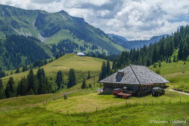 SF-IMG_6920 - La Spielmannda, alpine pasture farm, Gruyère region - Switzerland