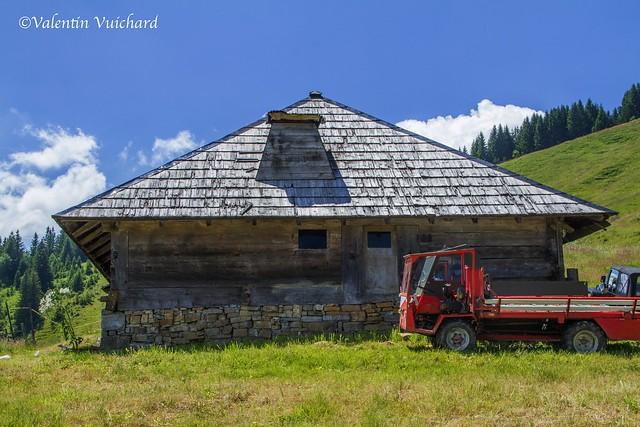 SF-IMG_6887 - La Spielmannda, alpine pasture farm, Gruyère region - Switzerland