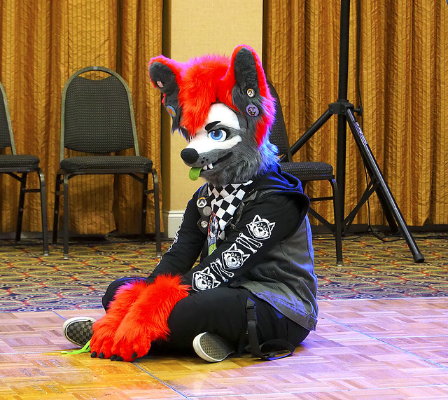 Mephit Furmeet 2019 - Fursuit Games 34 - Coydog