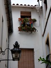 Callejon de Flores