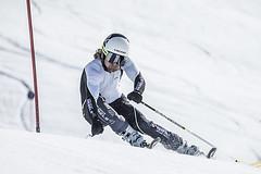 Koupím závodní lyže! A víte určitě, co chcete?