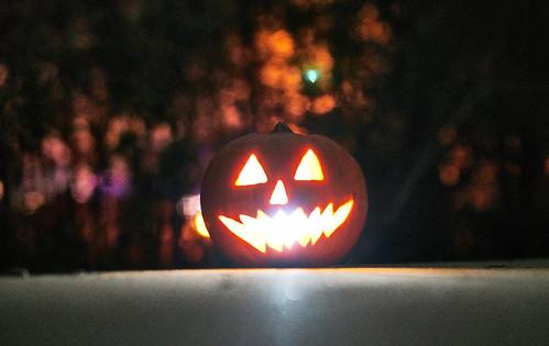 Pumpkin Hollow - 25 of 29