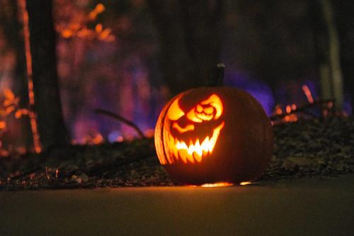 Pumpkin Hollow - 26 of 29