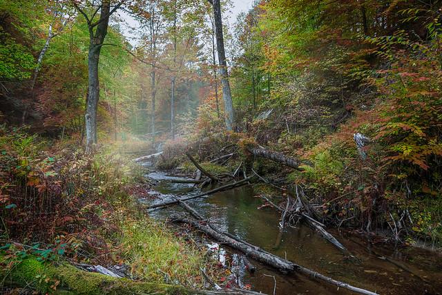 Burpee Creek