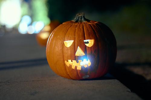 Pumpkin Hollow - 17 of 29