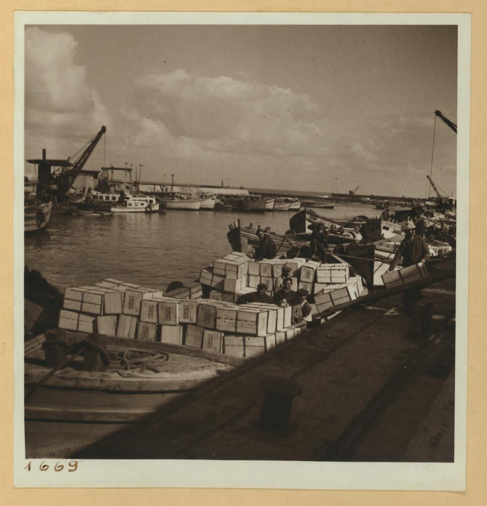 9 марта. Тель-Авив и окрестности. Портовый бассейн, погрузка апельсинов