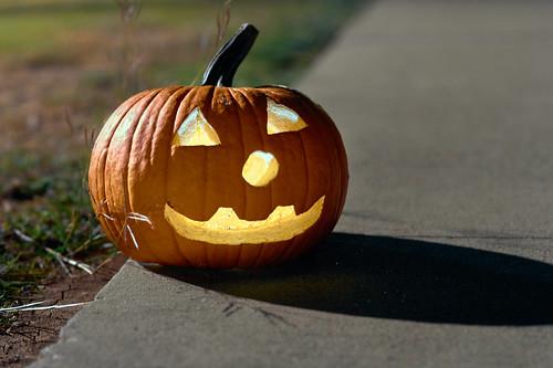 Pumpkin Hollow - 19 of 29