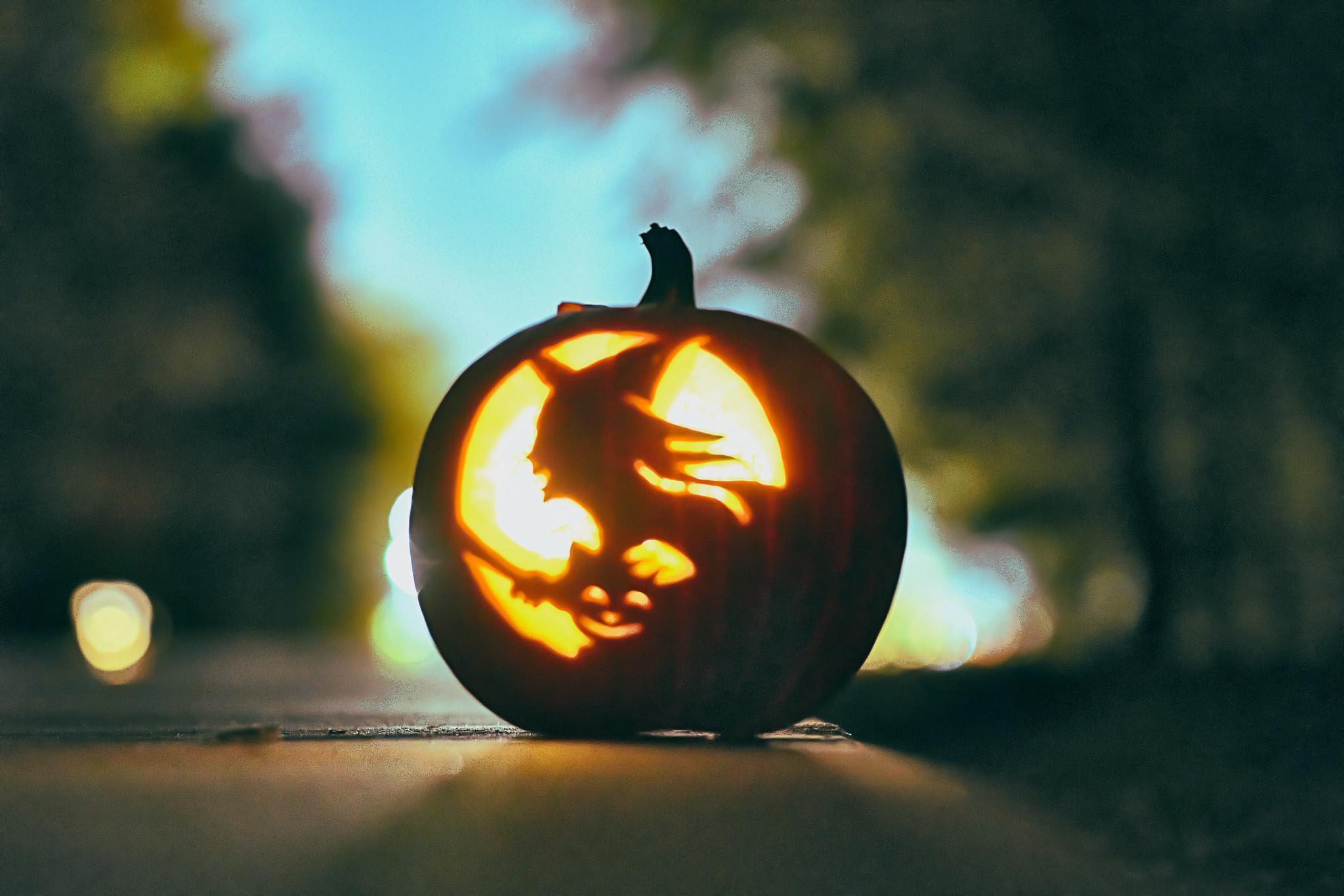 Pumpkin Hollow - 27 of 29