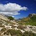 Cubersee auf Mallorca