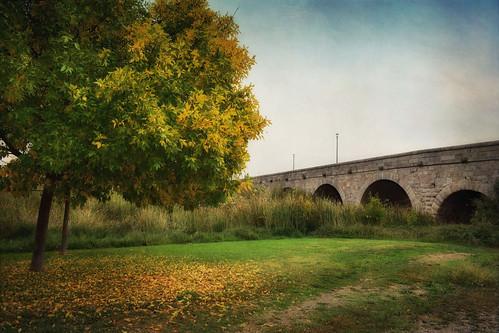 Autumn at the Roman Bridge