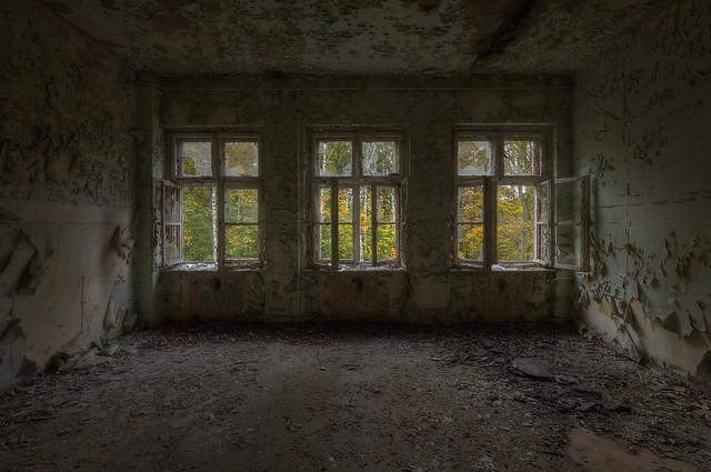 -Windows-