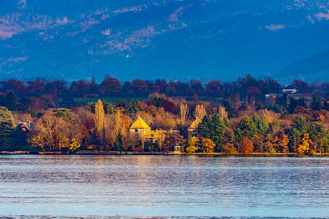 Autumn at the lake