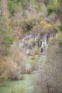 Parque Natural delAlto Tajo (III)