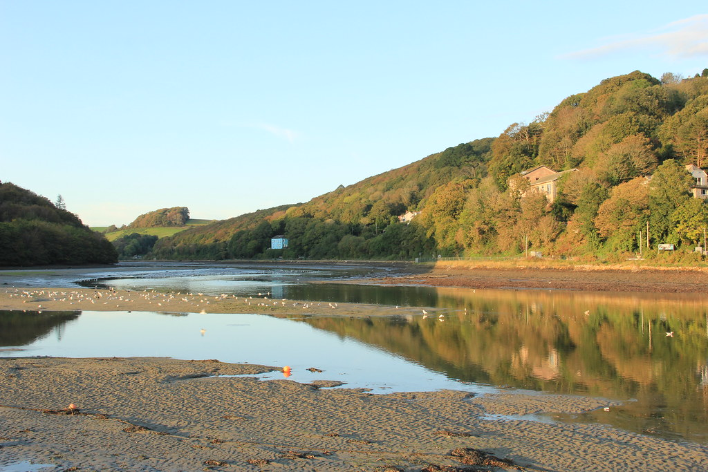 Mill Pool, Looe