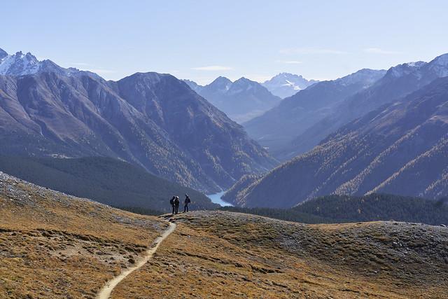 The wilderness of Munt la Schera