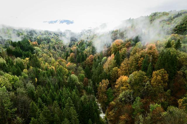 La vallée de l'Héria (Jura)