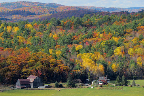 lebelvédère farmweddingswakefield wakefield quebec canada fallcolors autumncolors autumn fall automne gatineauhills couleursdautomne fallfoliage