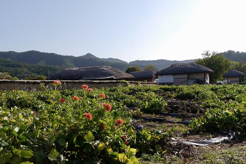 安东河回村 韩国