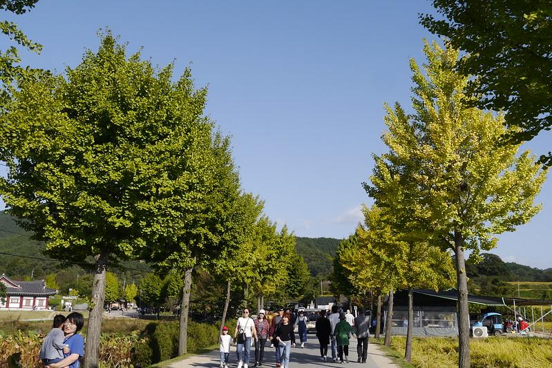 安東河回村 南韓
