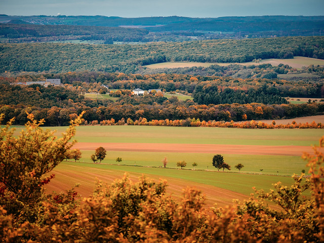 the_land_is_shrouded_in_the_colors_of_autumn