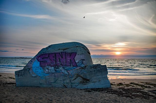 le cachalot échoué sur la plage de Keriourec