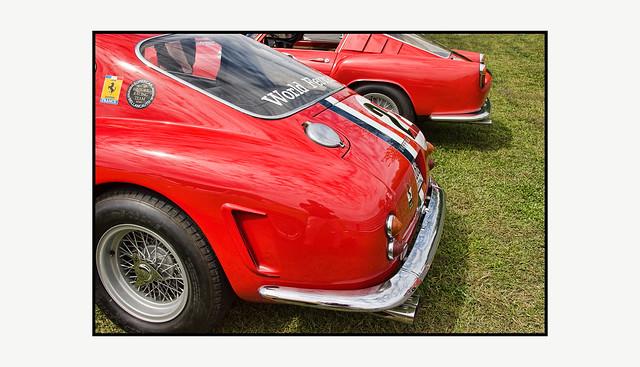 Red Rumps of Ferrari