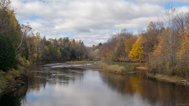 Automne, autumn - Parc Chauveau - Québec, Canada - 4908