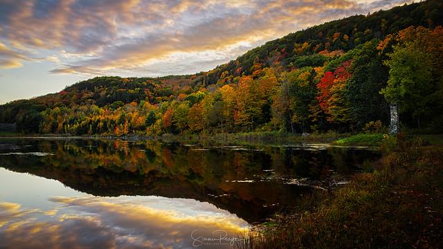 Shades of Autumn No. 6