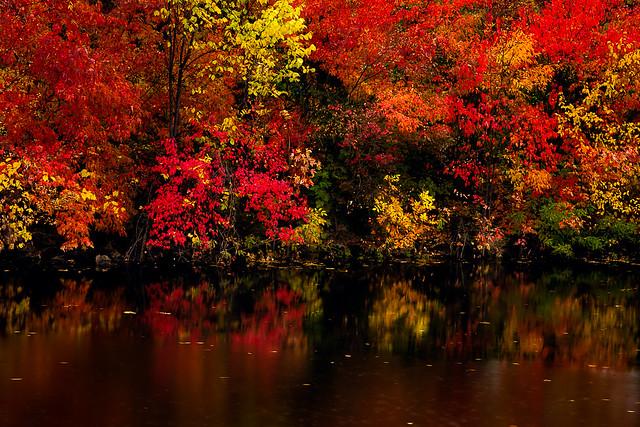 Minnesota in Autumn