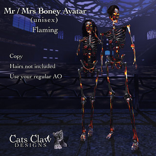 _CCD_ ad Mr n Mrs Boney Avatar Unisex Flaming