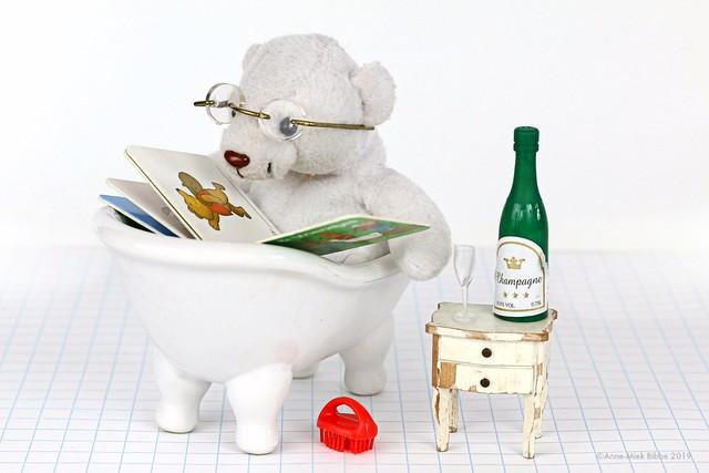 BEAR BATH BOOK + BEVERAGE  || BEER BAD BOEK + BORREL