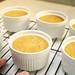 Day 3944 - Day 292 - Pumpkin Crème Brulee