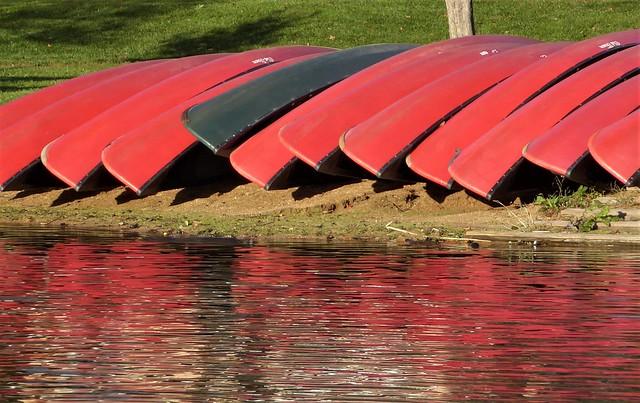 Wheaton, IL, Herrick Lake Forest Preserve, Canoe Reflection