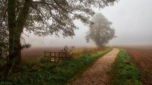 Herbstlandschaft 😀 München Lochhausen