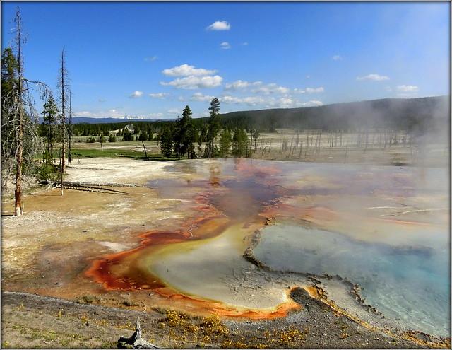 on Firehole Lake Drive - Yellowstone NP, WY